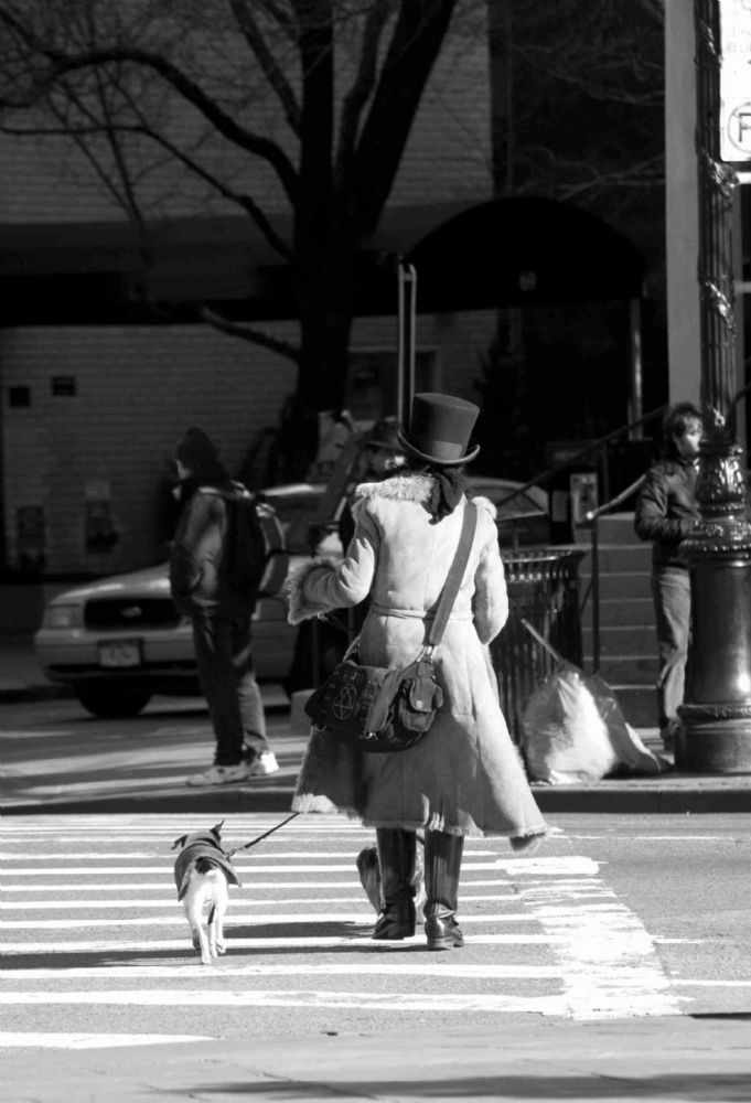 New York City.  Dog and Top Hat